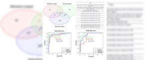 Un sistema informático para detectar biomarcadores del cáncer de páncreas