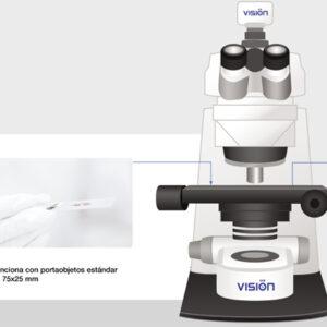 Vision Slide