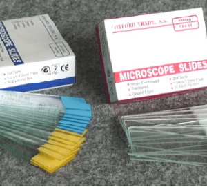 Oxford Trade Color Band Microscope Slide