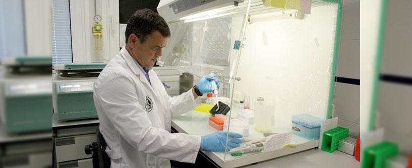 Identifican un gen asociado al sistema inmune que reduce la eficacia de la vacuna del virus del sida