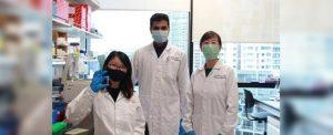 Nanotecnología contra la diabetes para una alternativa a pincharse insulina