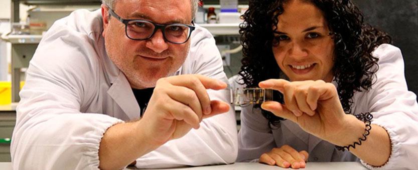 Nuevo 'biofilmchip' contra las infecciones bacterianas crónicas